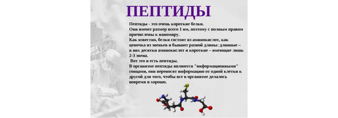 Мультипликационный ролик о пептидах